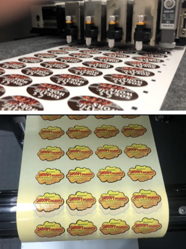 Digital Label Cutting Machine Evaluation by South African Customers